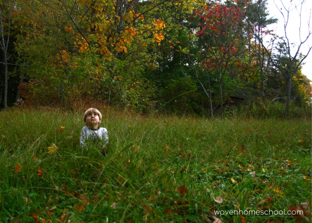 Boy sitting in field looking at sky.